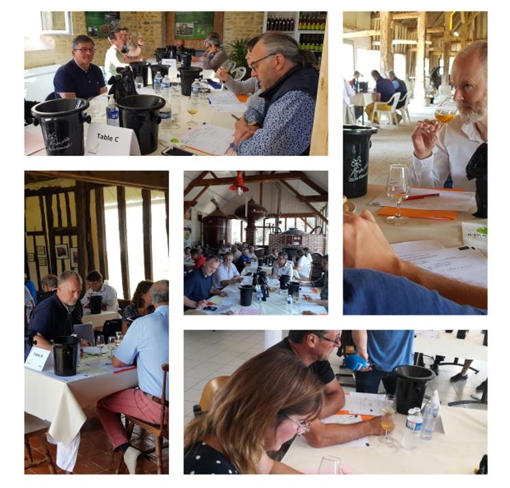 Résultats du concours des Cidres Normandie 2020