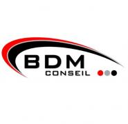 Logo BDM-Conseil