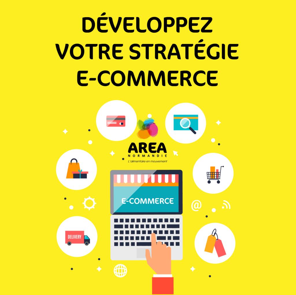 E-commerce : proposition d'accompagnement stratégique des entreprises