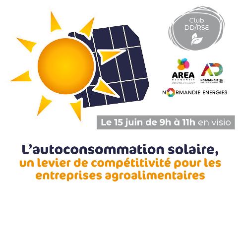 Club DD/RSE «L'autoconsommation solaire» le 15 juin
